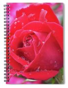 Dripping In Beauty - Double Knock Out Rose Spiral Notebook