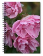 Droopy Pink Roses Spiral Notebook