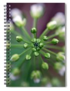 Drop Of Life Spiral Notebook