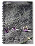 Droplet Stack Spiral Notebook