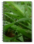 Droplets 01 Spiral Notebook