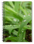 Droplets 02 Spiral Notebook