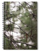 Droplets On Branches Spiral Notebook