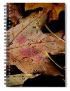 Droplets On Fallen Leaves Spiral Notebook