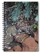 Droplets Over Web Spiral Notebook