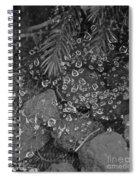 Droplets Spiral Notebook