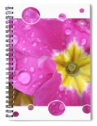 Bubbly Pink Raindrops  Spiral Notebook