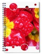 Drops Upon Raindrops 4 Spiral Notebook