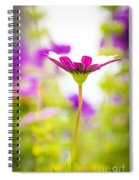 Drowning In The Sun Rays Spiral Notebook