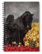 Druids In The Fields Spiral Notebook