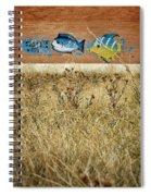 Dry Aquarium Spiral Notebook