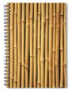 Dry Bamboo Rows Spiral Notebook