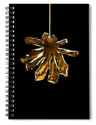 Dry Leaf Collection 4 Spiral Notebook