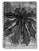 Dry Leaf Collection Bnw 1 Spiral Notebook