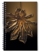 Dry Leaf Collection Digital  Spiral Notebook
