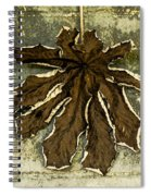 Dry Leaf Collection Natural Spiral Notebook