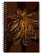 Dry Leaf Collection Psychedelic Spiral Notebook