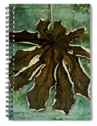 Dry Leaf Collection Wall Spiral Notebook