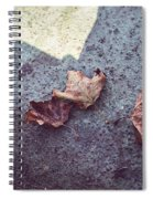Dry Leaves Spiral Notebook
