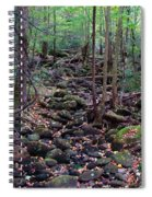 Dry River Bed- Autumn Spiral Notebook