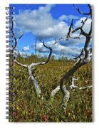 Dry Tree Spiral Notebook