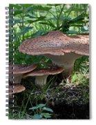 Dryad's Saddle Fungus Spiral Notebook