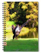 Drying Her Wings Spiral Notebook