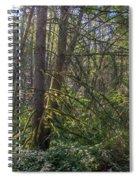 Dsc_0012 Web Spiral Notebook