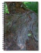 Dsc_0033 Web Spiral Notebook