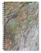 Dsc_0034 Web Spiral Notebook
