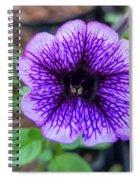 Dsc_1513 Web Spiral Notebook