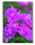 Dsc_1514 Web Spiral Notebook