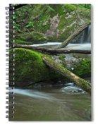 Dual Falls Spiral Notebook