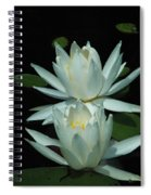Dual Lilies Spiral Notebook