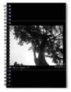 Dubignon Tree Spiral Notebook