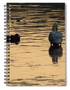 Duck And Swan At Sunrise Spiral Notebook