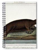 Duck-billed Platypus Ornithorhynchus Spiral Notebook