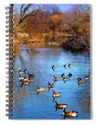 Duck Duck Goose Goose Spiral Notebook