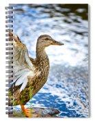 Duck Spiral Notebook