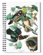Lummer Or Wood Duck Spiral Notebook