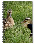 Duck Meeting At Frankenmuth Spiral Notebook