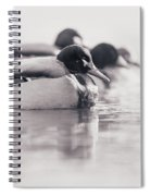Duck On Water Spiral Notebook