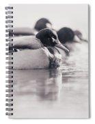 Duck On Water Spiral Notebook