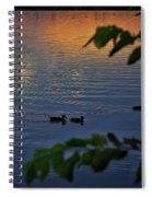 Ducks At Daybreak  Spiral Notebook