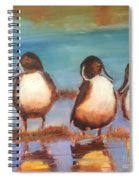 Ducks In A Row Spiral Notebook