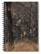 Ducks In Flight Spiral Notebook