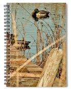 Ducks On A Pond Spiral Notebook