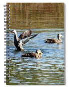 Ducks On Colorful Pond Spiral Notebook