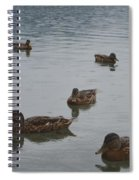 Ducks On Lake Bled Spiral Notebook