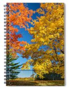 Dueling Maples Spiral Notebook